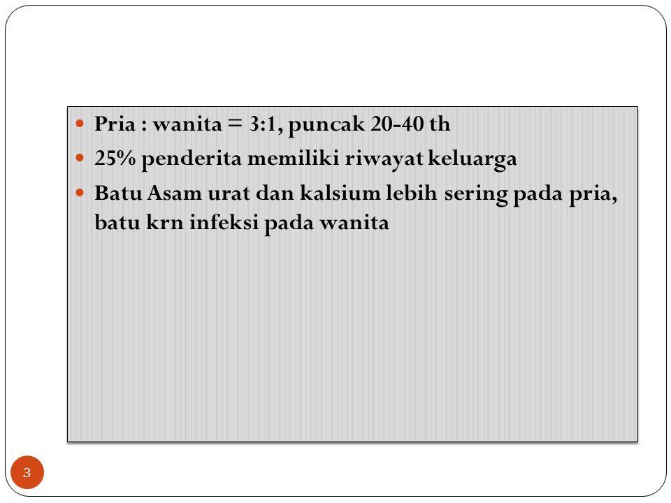 Pria : wanita = 3:1, puncak 20-40 th 25% penderita memiliki riwayat keluarga Batu Asam urat dan kalsium lebih sering pada pria, batu krn infeksi pada