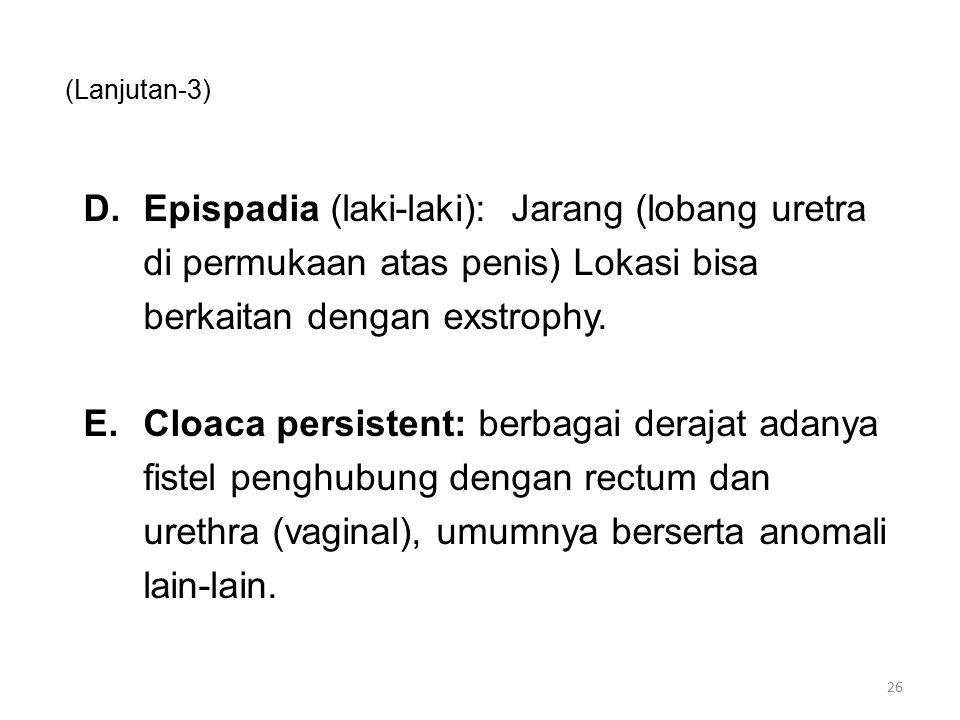 (Lanjutan-3) D.Epispadia (laki-laki): Jarang (lobang uretra di permukaan atas penis) Lokasi bisa berkaitan dengan exstrophy. E.Cloaca persistent: berb