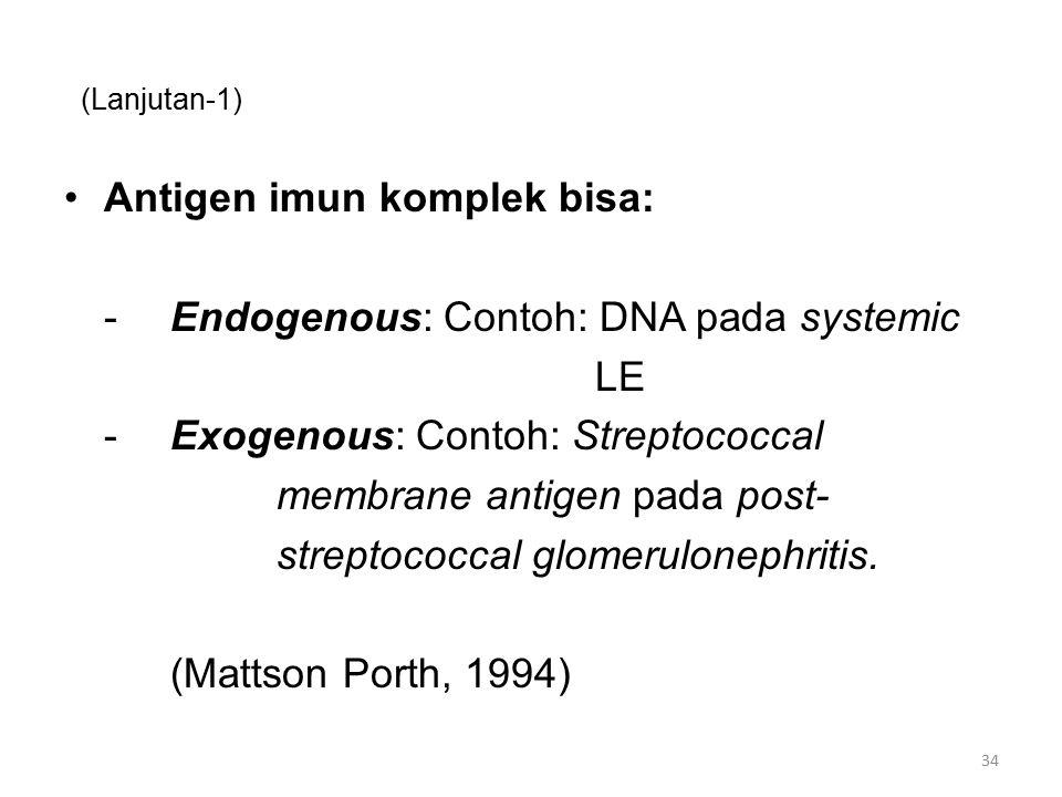 (Lanjutan-1) Antigen imun komplek bisa: -Endogenous: Contoh: DNA pada systemic LE -Exogenous: Contoh: Streptococcal membrane antigen pada post- streptococcal glomerulonephritis.