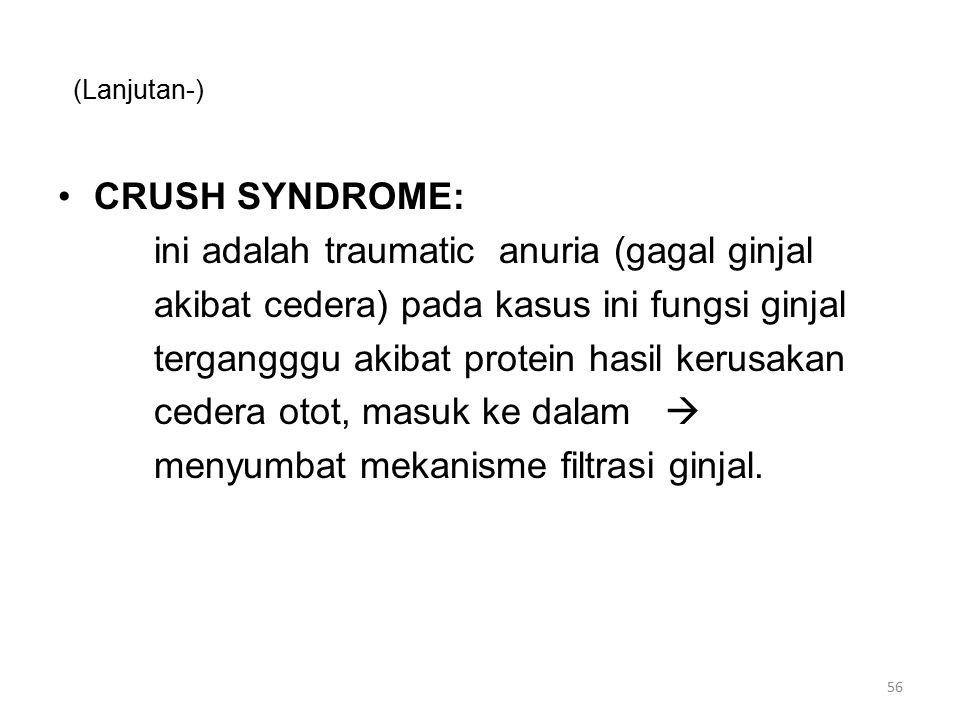 (Lanjutan-) CRUSH SYNDROME: ini adalah traumatic anuria (gagal ginjal akibat cedera) pada kasus ini fungsi ginjal tergangggu akibat protein hasil kerusakan cedera otot, masuk ke dalam  menyumbat mekanisme filtrasi ginjal.