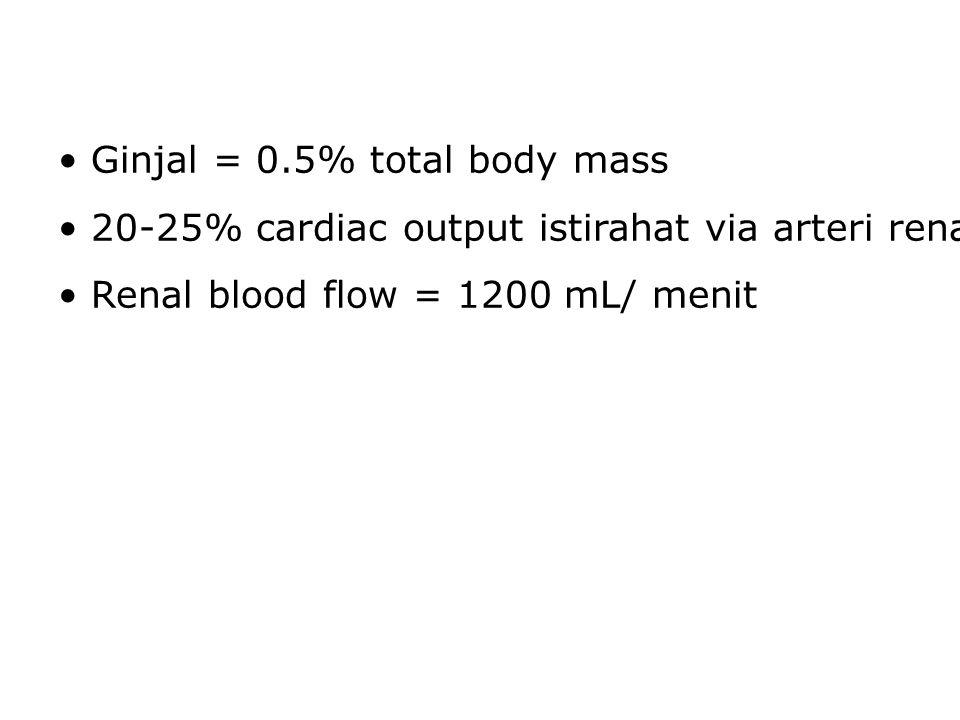 Ginjal = 0.5% total body mass 20-25% cardiac output istirahat via arteri renalis Renal blood flow = 1200 mL/ menit