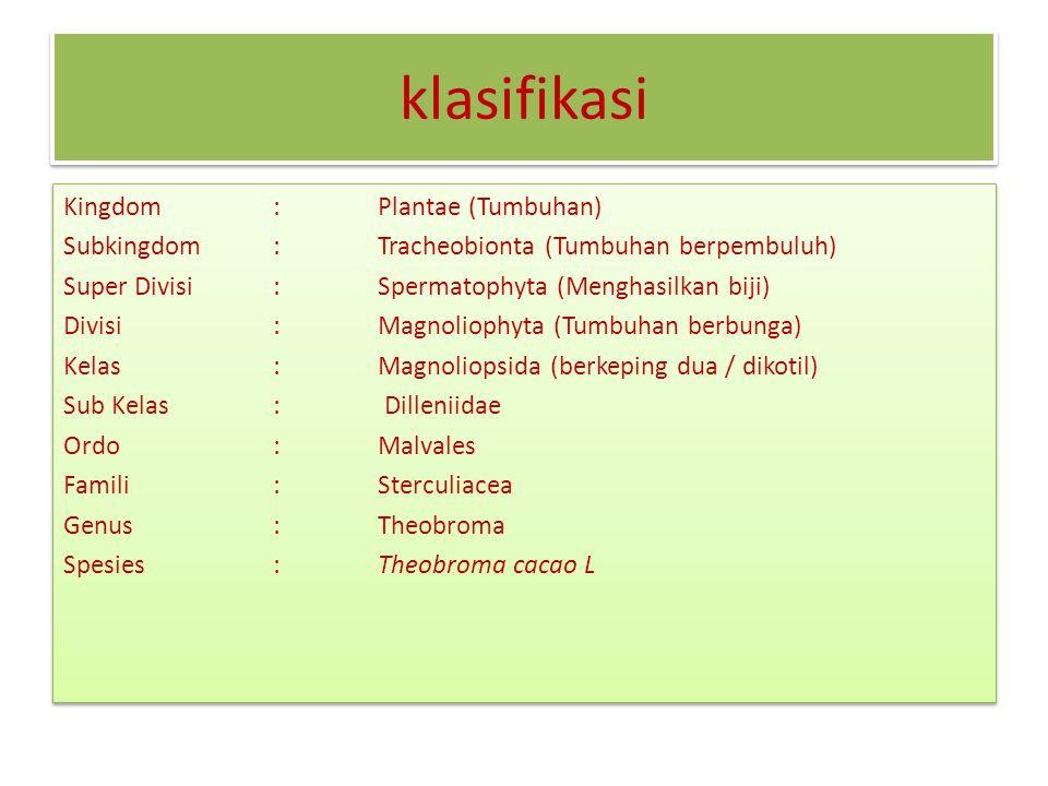 klasifikasi Kingdom: Plantae (Tumbuhan) Subkingdom: Tracheobionta (Tumbuhan berpembuluh) Super Divisi: Spermatophyta (Menghasilkan biji) Divisi: Magnoliophyta (Tumbuhan berbunga) Kelas: Magnoliopsida (berkeping dua / dikotil) Sub Kelas: Dilleniidae Ordo: Malvales Famili: Sterculiacea Genus: Theobroma Spesies: Theobroma cacao L Kingdom: Plantae (Tumbuhan) Subkingdom: Tracheobionta (Tumbuhan berpembuluh) Super Divisi: Spermatophyta (Menghasilkan biji) Divisi: Magnoliophyta (Tumbuhan berbunga) Kelas: Magnoliopsida (berkeping dua / dikotil) Sub Kelas: Dilleniidae Ordo: Malvales Famili: Sterculiacea Genus: Theobroma Spesies: Theobroma cacao L