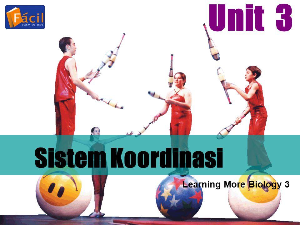 Sistem Koordinasi Unit 3 Learning More Biology 3