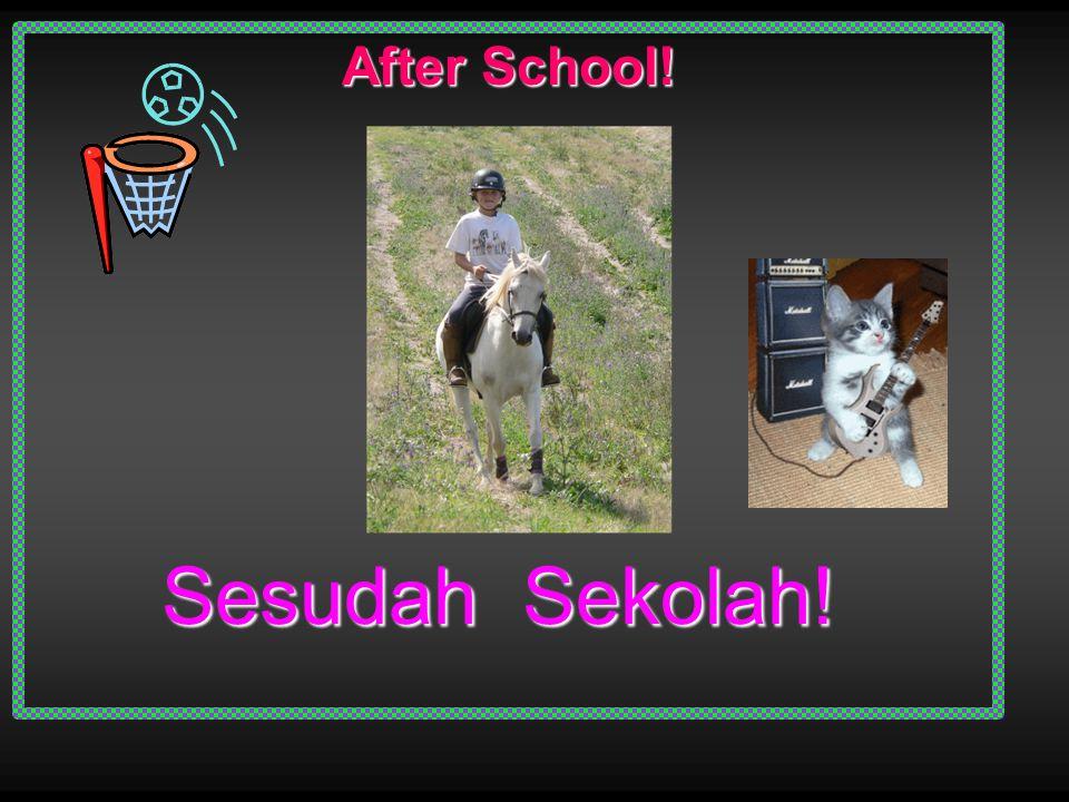 Setiap Hari Sesudah Sekolah Saya Pergi Ke Memberi Makanan Kuda Saya.