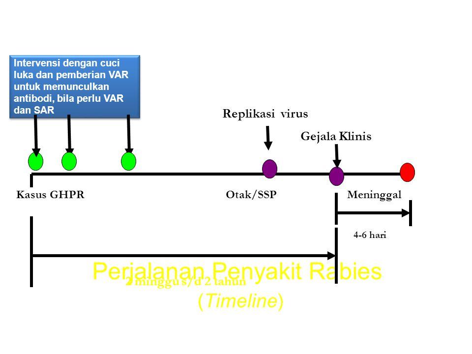Perjalanan Penyakit Rabies (Timeline) Intervensi dengan cuci luka dan pemberian VAR untuk memunculkan antibodi, bila perlu VAR dan SAR 4-6 hari 2 ming