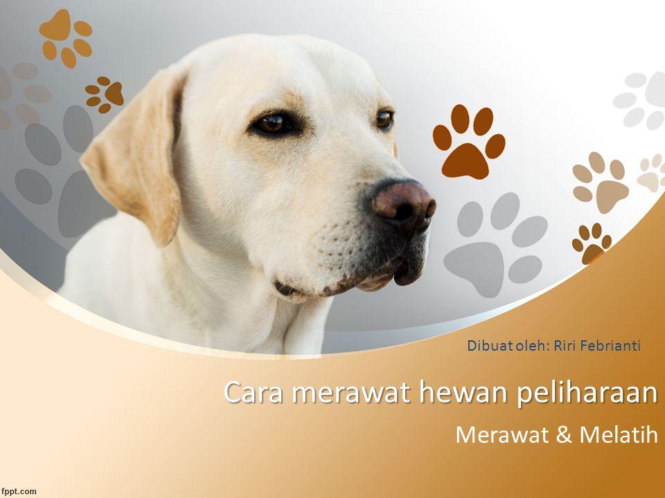 Cara merawat hewan peliharaan Merawat & Melatih Dibuat oleh: Riri Febrianti