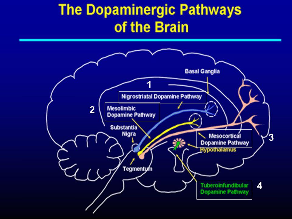 Terapi Farmakologi Menggunakan obat-obat antipsikotik untuk memodulasi neurotransmiter yang terlibat Tipikal/FGA - Generasi lama - Memblok reseptor dopamin D2 - Efek samping EPS besar - Efektif untuk mengatasi gejala positif Atipikal/SGA - Generasi lebih baru (th 1990an) - Memblok reseptor 5-HT2, efek blokade dopamin rendah - Efek samping EPS lebih kecil - Efektif untuk mengatasi gejala baik positif maupun negatif Antipsikotik