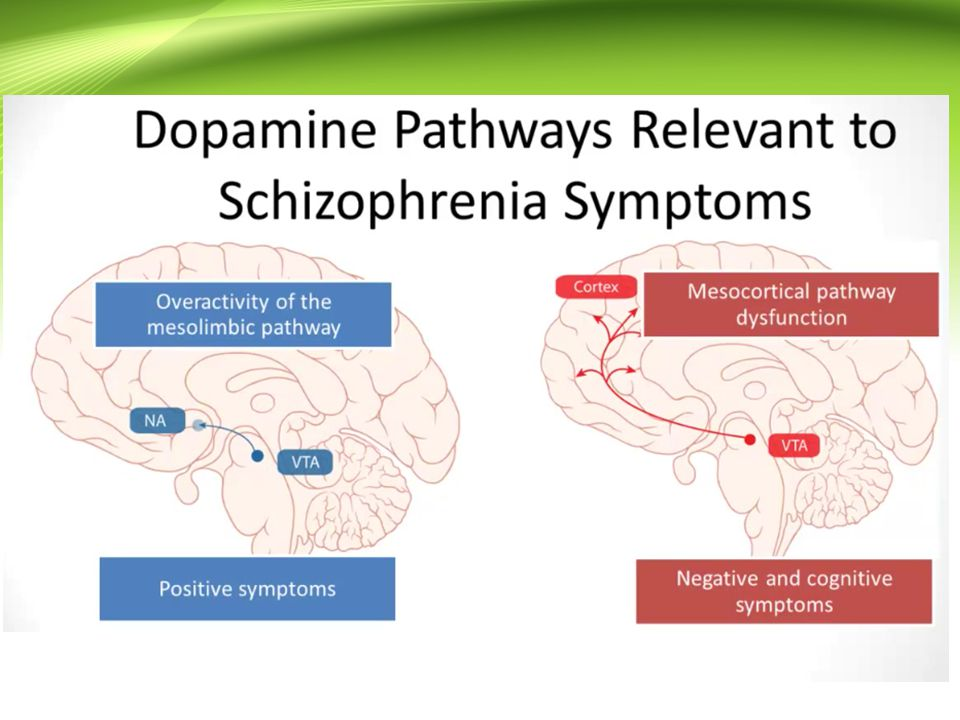Hipotesis Glutamatergik (Glutamatergik dysfunction) Terjadi defisiensi aktivitas glutamat menghasilkan symptom yang sama saat terjadi hiperaktivitas dopaminergik