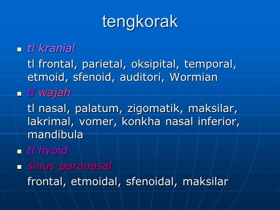 tengkorak tl kranial tl kranial tl frontal, parietal, oksipital, temporal, etmoid, sfenoid, auditori, Wormian tl wajah tl wajah tl nasal, palatum, zig