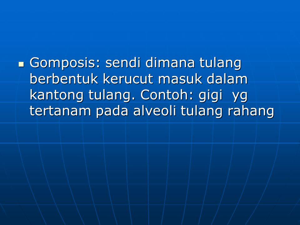 Gomposis: sendi dimana tulang berbentuk kerucut masuk dalam kantong tulang. Contoh: gigi yg tertanam pada alveoli tulang rahang Gomposis: sendi dimana