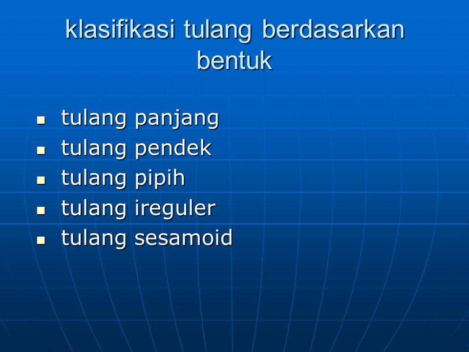 karakteristik permukaan tulang proyeksi : proyeksi : tuberositastuberositas tuberkeltuberkel spinaspina kondiluskondilus kristakrista depresi: perforasi: depresi: perforasi: -fovea- foramen -fosa- kanal -sulkus - fisura