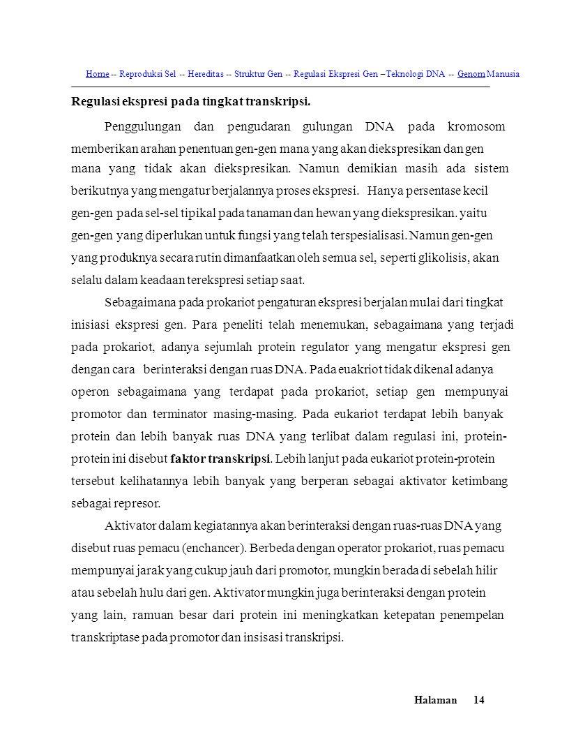 HomeHome -- Reproduksi Sel -- Hereditas -- Struktur Gen -- Regulasi Ekspresi Gen –Teknologi DNA -- Genom ManusiaGenom Regulasi ekspresi pada tingkat t