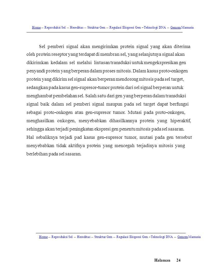 Halaman24 HomeHome -- Reproduksi Sel -- Hereditas -- Struktur Gen -- Regulasi Ekspresi Gen –Teknologi DNA -- Genom ManusiaGenom Sel pemberi signal aka