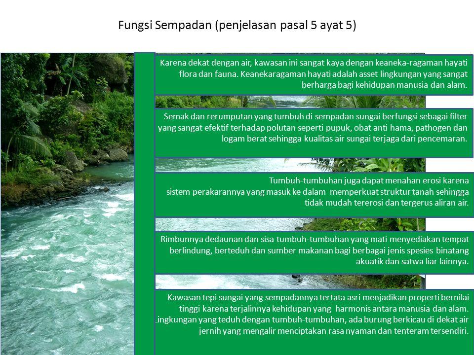 Fungsi Sempadan (penjelasan pasal 5 ayat 5) Karena dekat dengan air, kawasan ini sangat kaya dengan keaneka-ragaman hayati flora dan fauna. Keanekarag