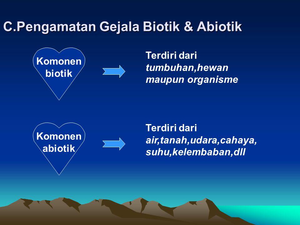 C.Pengamatan Gejala Biotik & Abiotik Komonen biotik Terdiri dari tumbuhan,hewan maupun organisme Komonen abiotik Terdiri dari air,tanah,udara,cahaya, suhu,kelembaban,dll