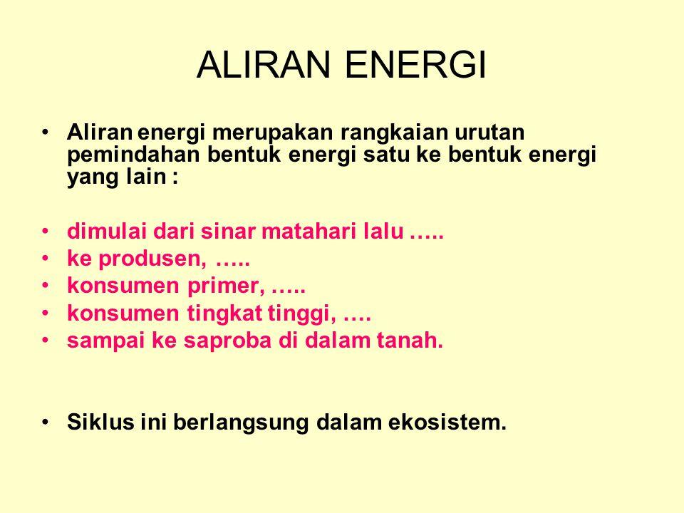 ALIRAN ENERGI Aliran energi merupakan rangkaian urutan pemindahan bentuk energi satu ke bentuk energi yang lain : dimulai dari sinar matahari lalu …..