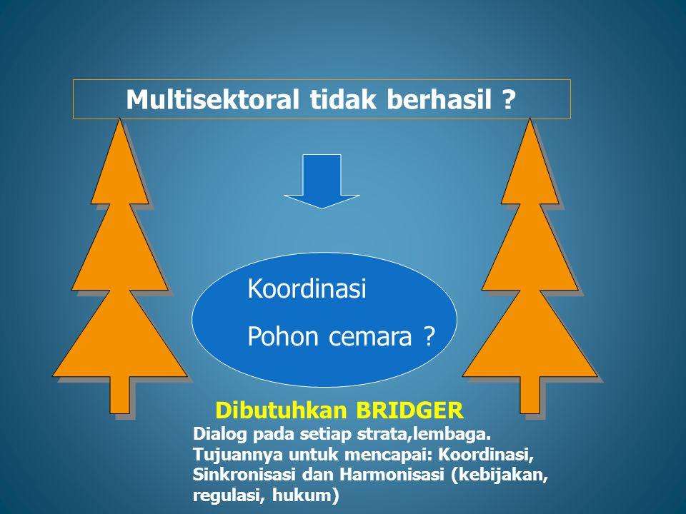 Multisektoral tidak berhasil ? Koordinasi Pohon cemara ? Dibutuhkan BRIDGER Dialog pada setiap strata,lembaga. Tujuannya untuk mencapai: Koordinasi, S