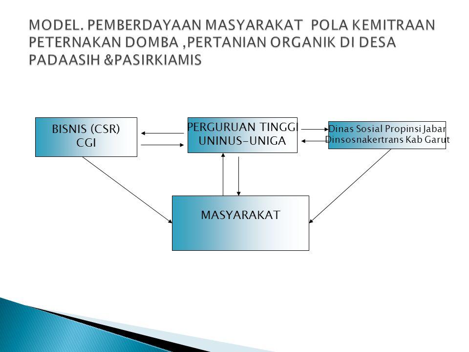MODEL. PEMBERDAYAAN MASYARAKAT POLA KEMITRAAN PETERNAKAN DOMBA,PERTANIAN ORGANIK DI DESA PADAASIH &PASIRKIAMIS MASYARAKAT BISNIS (CSR) CGI PERGURUAN T