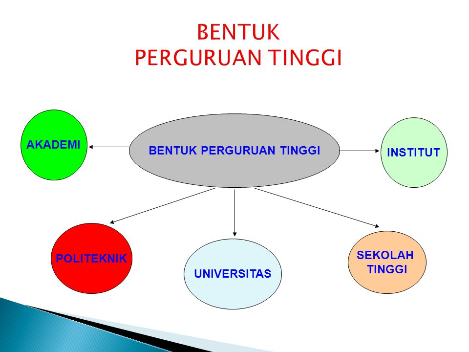 UU NO 12 TAHUN 2012 TENTANG PENDIDIKAN TINGGI