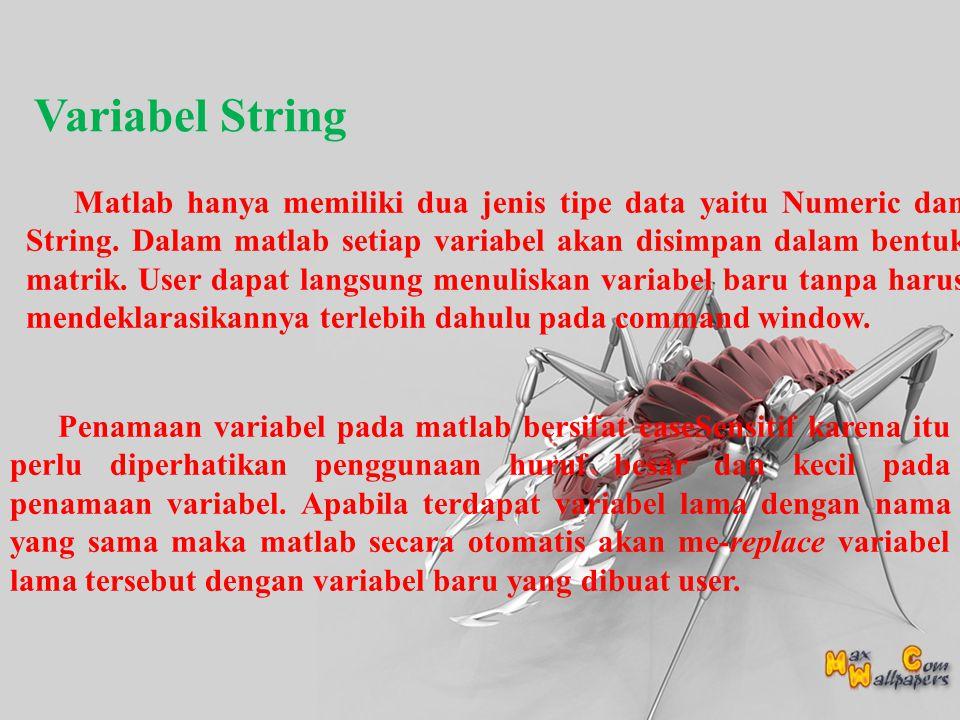 Variabel String Matlab hanya memiliki dua jenis tipe data yaitu Numeric dan String.