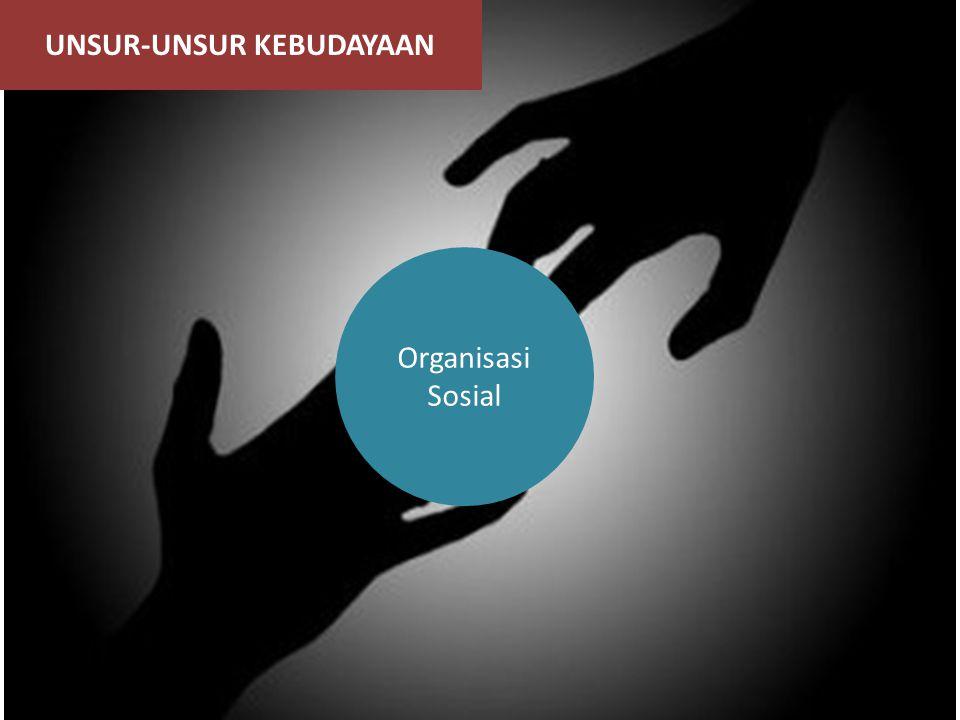 UNSUR-UNSUR KEBUDAYAAN Organisasi Sosial