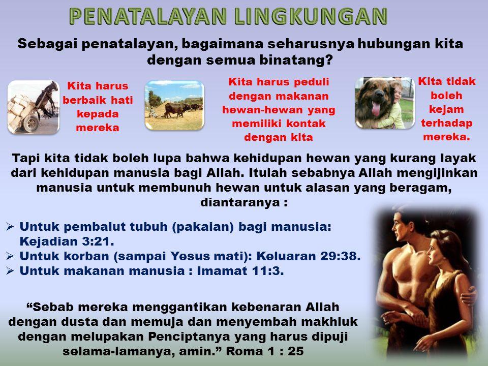 Sebagai penatalayan, bagaimana seharusnya hubungan kita dengan semua binatang.