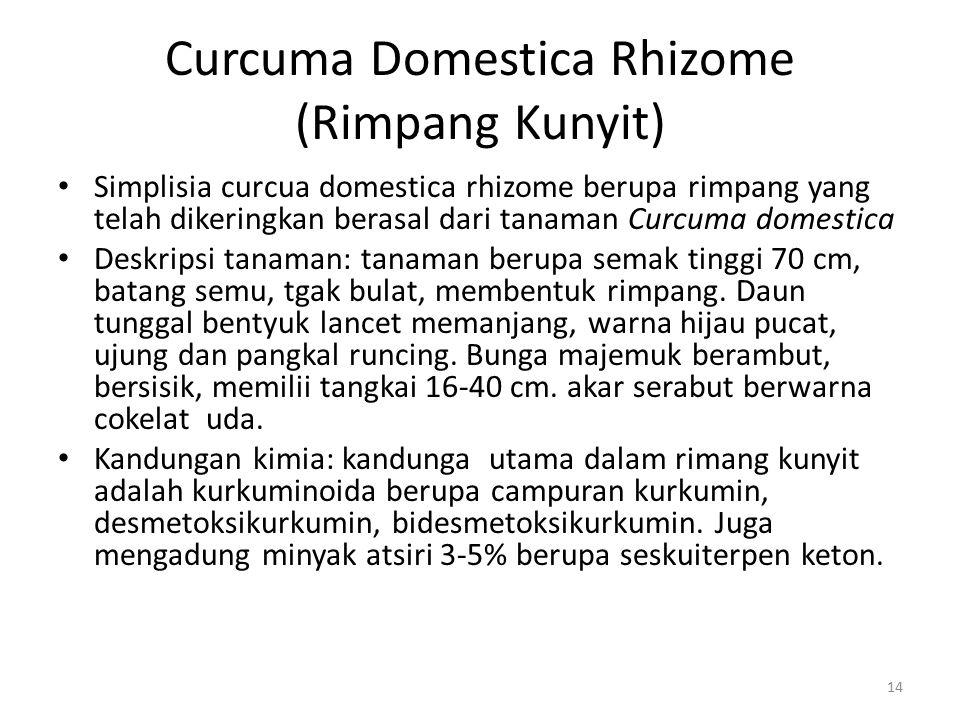 Curcuma Domestica Rhizome (Rimpang Kunyit) Simplisia curcua domestica rhizome berupa rimpang yang telah dikeringkan berasal dari tanaman Curcuma domes
