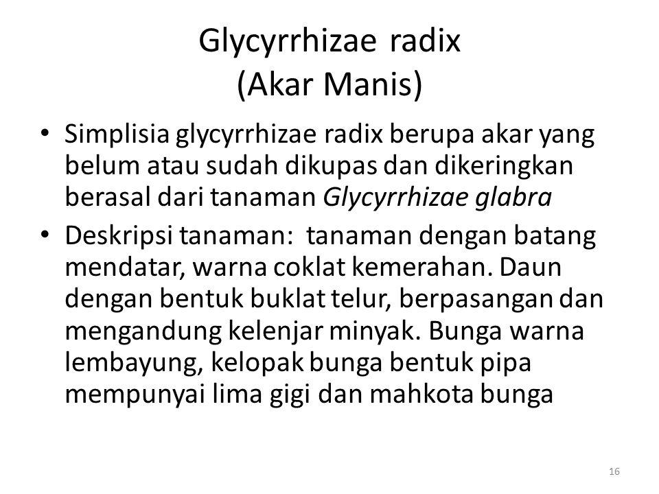 Glycyrrhizae radix (Akar Manis) Simplisia glycyrrhizae radix berupa akar yang belum atau sudah dikupas dan dikeringkan berasal dari tanaman Glycyrrhiz