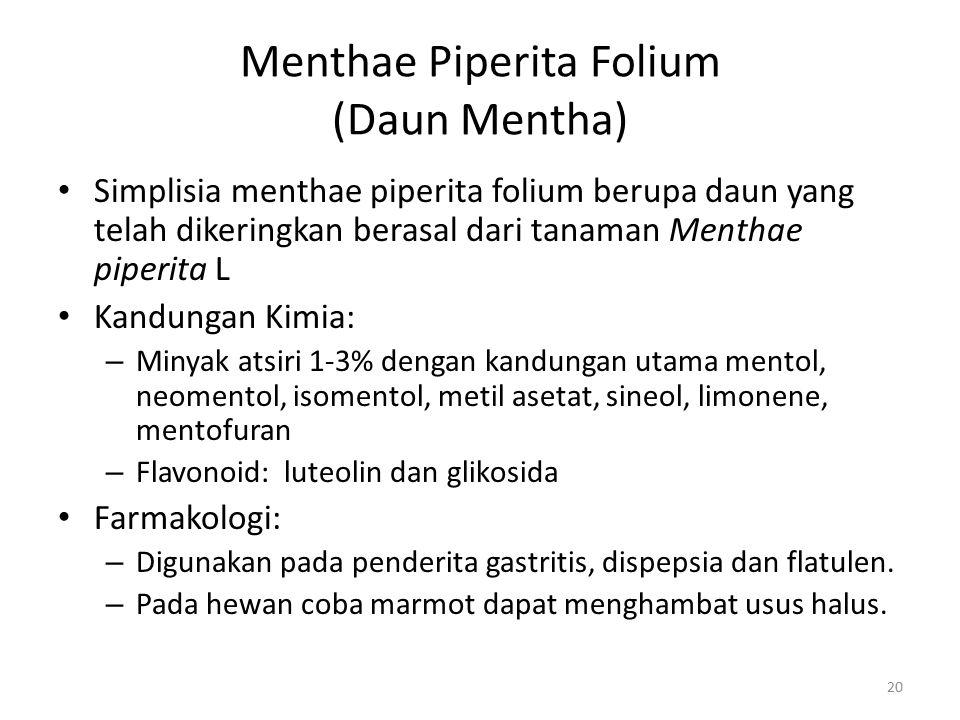 Menthae Piperita Folium (Daun Mentha) Simplisia menthae piperita folium berupa daun yang telah dikeringkan berasal dari tanaman Menthae piperita L Kan