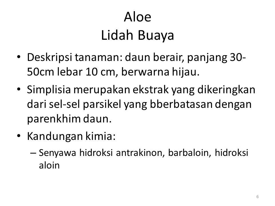 Aloe Lidah Buaya Deskripsi tanaman: daun berair, panjang 30- 50cm lebar 10 cm, berwarna hijau. Simplisia merupakan ekstrak yang dikeringkan dari sel-s
