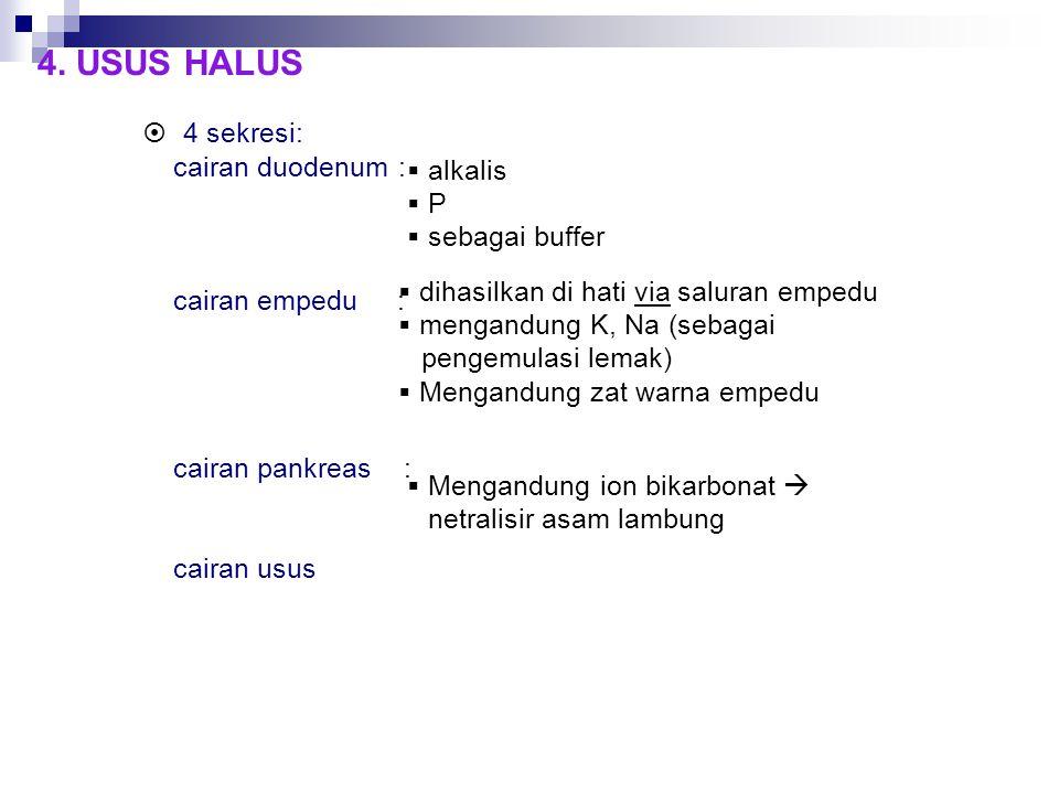 4. USUS HALUS  4 sekresi: cairan duodenum : cairan empedu : cairan pankreas : cairan usus  alkalis  P  sebagai buffer  dihasilkan di hati via sal