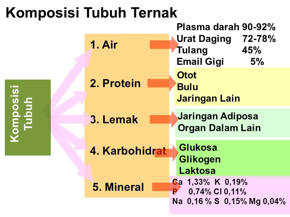 Komposisi Tubuh Ternak 1. Air 2. Protein 3. Lemak 4. Karbohidrat Plasma darah 90-92% Urat Daging 72-78% Tulang 45% Email Gigi 5% 5. Mineral Otot Bulu
