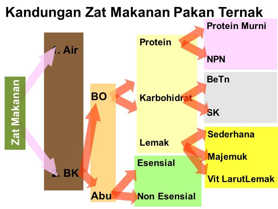 Kandungan Zat Makanan Pakan Ternak 1. Air 2. BK Zat Makanan BO Abu Protein Karbohidrat Lemak Protein Murni NPN BeTn SK Sederhana Majemuk Vit LarutLema