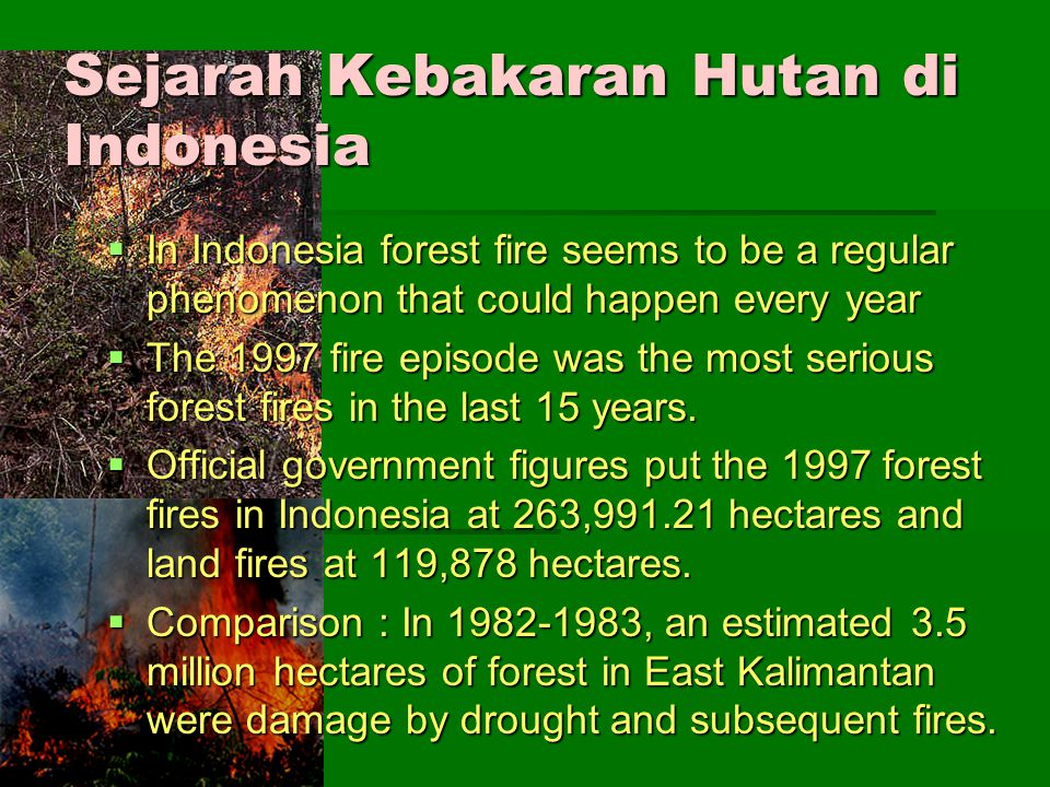 Sejarah Kebakaran Hutan di Indonesia  In Indonesia forest fire seems to be a regular phenomenon that could happen every year  The 1997 fire episode