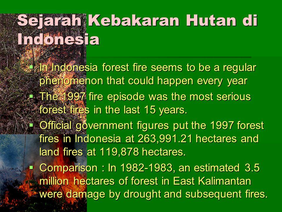 FIRE Sejarah Sejarah Api, merupakan alat kehidupan tertua sejak jaman purba.