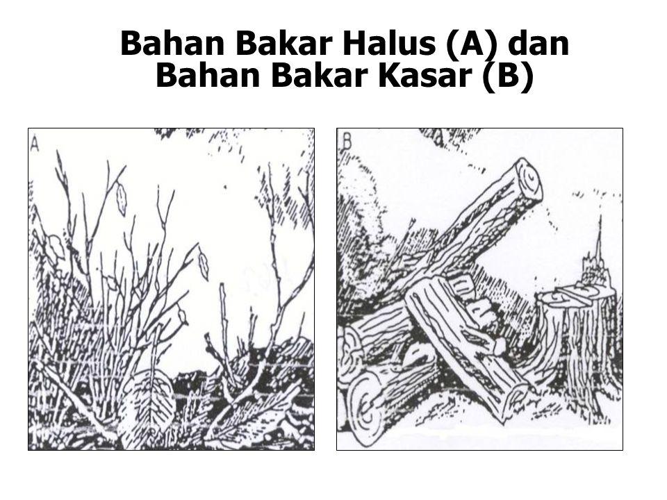 Bahan Bakar Halus (A) dan Bahan Bakar Kasar (B)