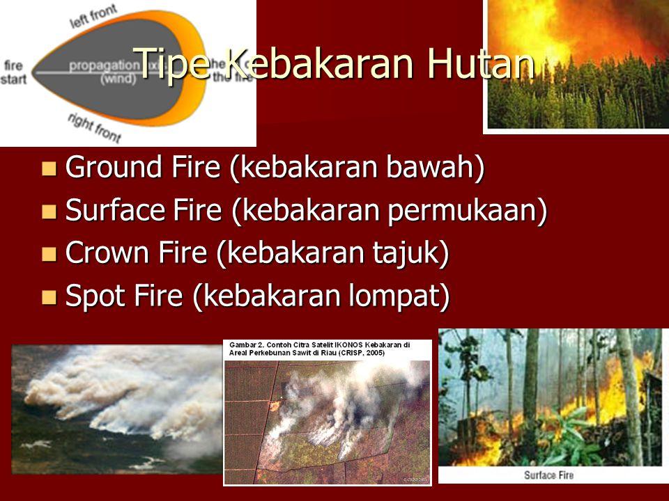 Tipe Kebakaran Hutan Ground Fire (kebakaran bawah) Ground Fire (kebakaran bawah) Surface Fire (kebakaran permukaan) Surface Fire (kebakaran permukaan) Crown Fire (kebakaran tajuk) Crown Fire (kebakaran tajuk) Spot Fire (kebakaran lompat) Spot Fire (kebakaran lompat)