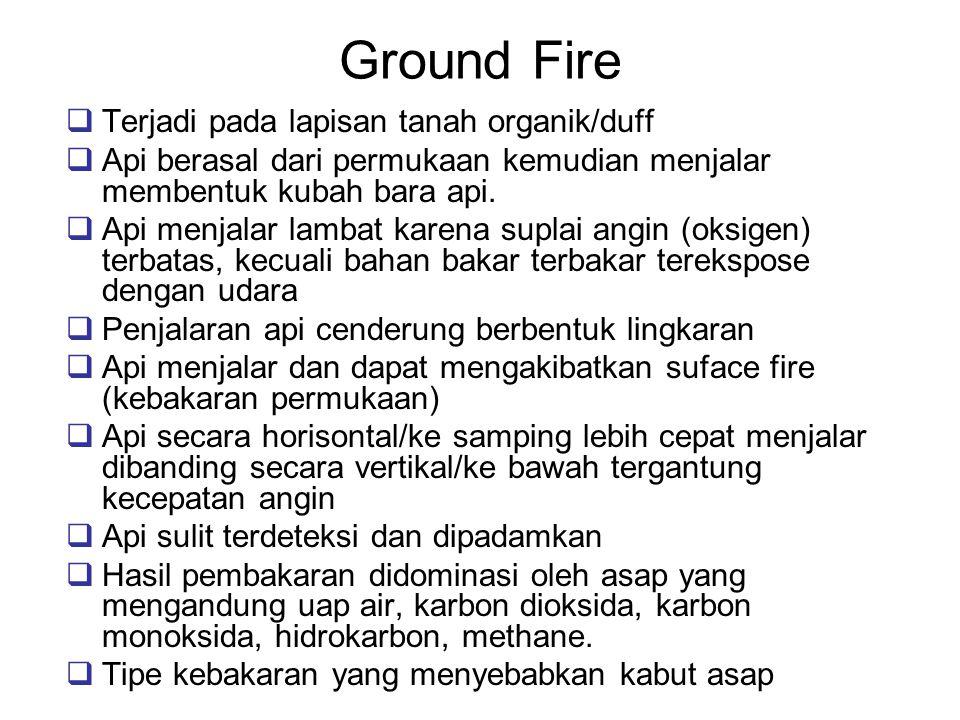 Faktor Yang Mempengaruhi Nyala Api Bahan Bakar (jenis bahan bakar, kekompakan bahan bakar, kadar air bahan bakar) Cuaca (curah hujan, angin, suhu, kelembaban, radiasi matahari) Topografi (kelerengan, aspect)