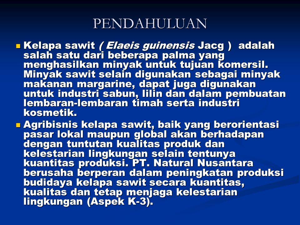 PENDAHULUAN Kelapa sawit ( Elaeis guinensis Jacg ) adalah salah satu dari beberapa palma yang menghasilkan minyak untuk tujuan komersil.