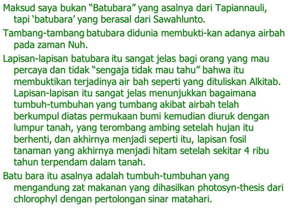 """Maksud saya bukan """"Batubara"""" yang asalnya dari Tapiannauli, tapi 'batubara' yang berasal dari Sawahlunto. Tambang-tambang batubara didunia membukti-ka"""