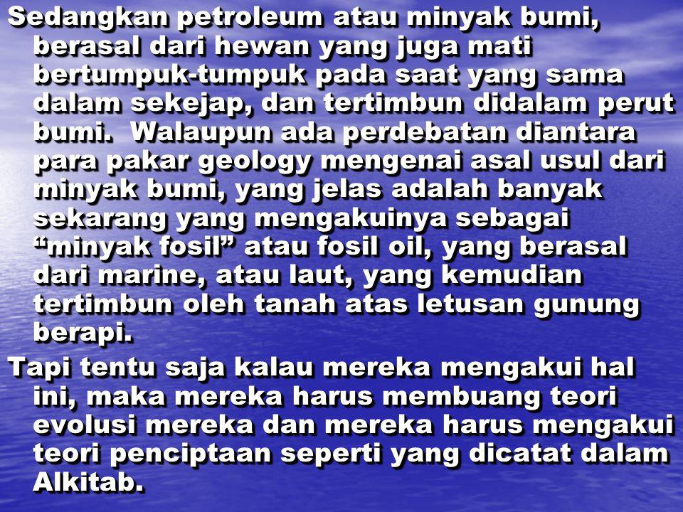 Sedangkan petroleum atau minyak bumi, berasal dari hewan yang juga mati bertumpuk-tumpuk pada saat yang sama dalam sekejap, dan tertimbun didalam peru