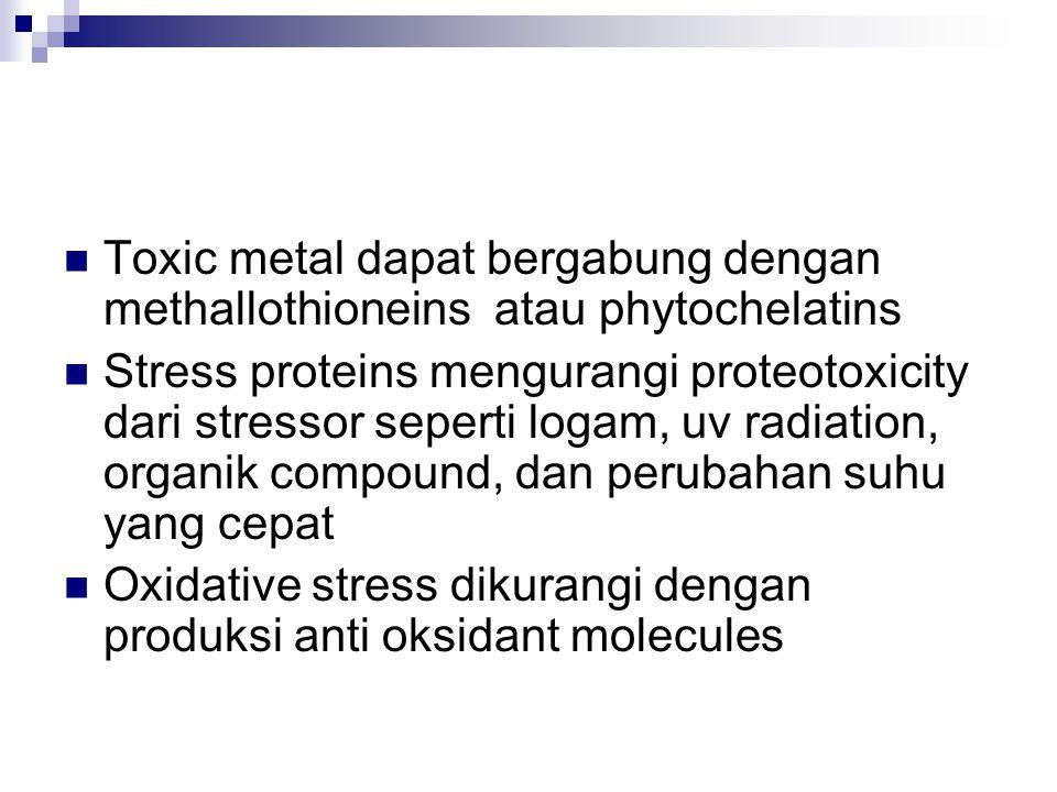 Toxic metal dapat bergabung dengan methallothioneins atau phytochelatins Stress proteins mengurangi proteotoxicity dari stressor seperti logam, uv radiation, organik compound, dan perubahan suhu yang cepat Oxidative stress dikurangi dengan produksi anti oksidant molecules
