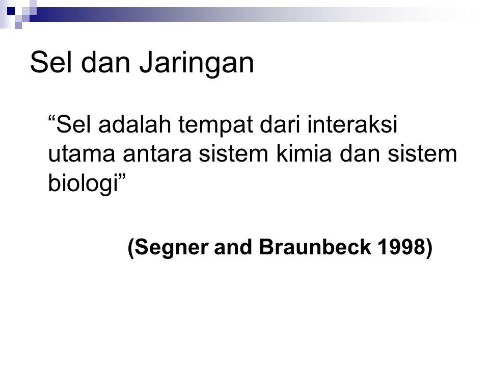 Sel dan Jaringan Sel adalah tempat dari interaksi utama antara sistem kimia dan sistem biologi (Segner and Braunbeck 1998)