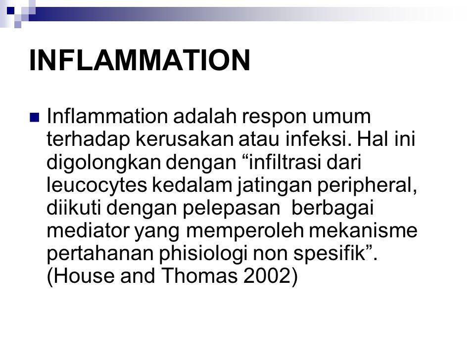 INFLAMMATION Inflammation adalah respon umum terhadap kerusakan atau infeksi.