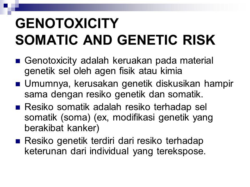 GENOTOXICITY SOMATIC AND GENETIC RISK Genotoxicity adalah keruakan pada material genetik sel oleh agen fisik atau kimia Umumnya, kerusakan genetik diskusikan hampir sama dengan resiko genetik dan somatik.