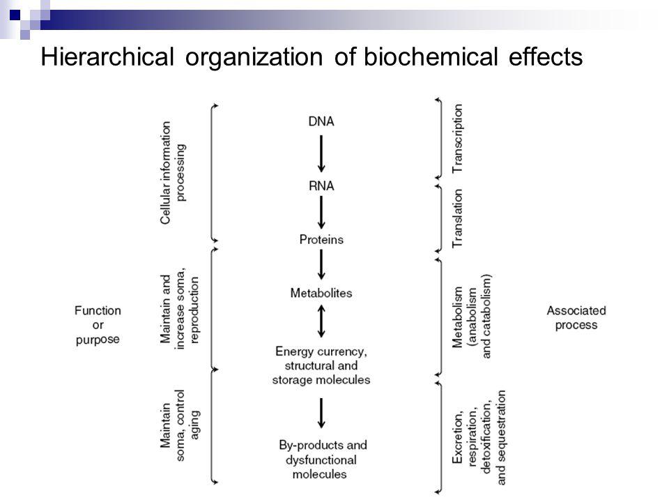Banyak kontaminan organik yang seringkali berubah didalam organisme yang berakibat kimia berbahaya lebih sulit untuk di bersihkan.