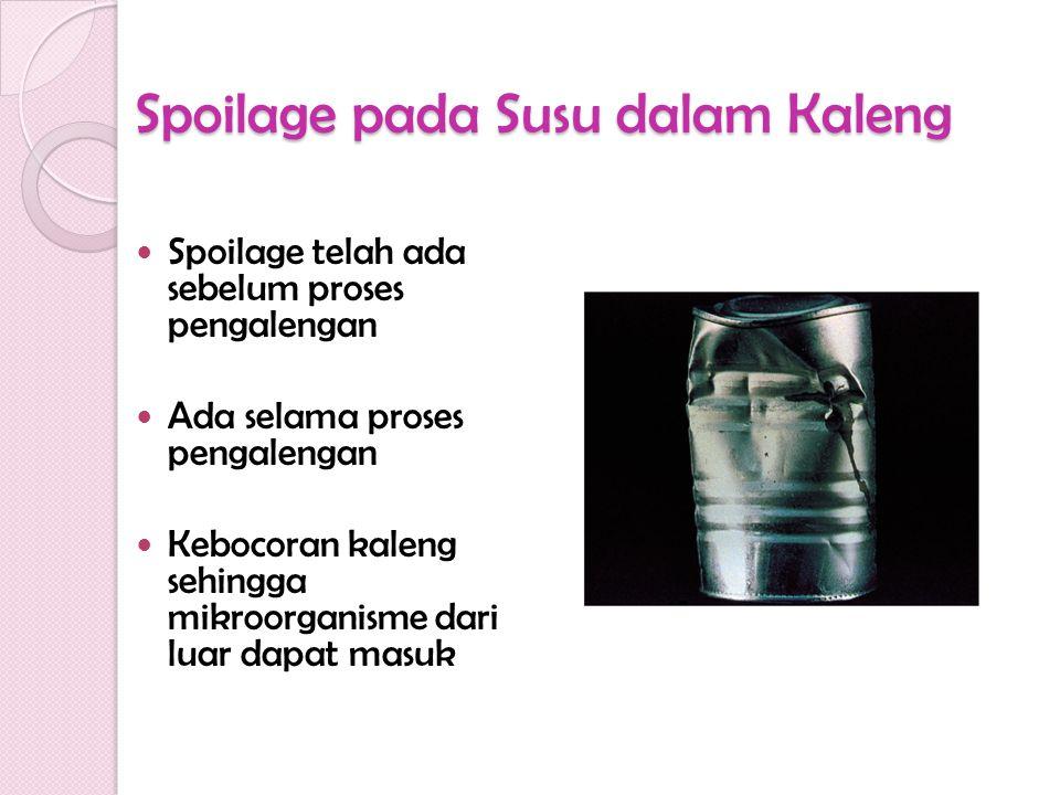 Spoilage pada Susu dalam Kaleng Spoilage telah ada sebelum proses pengalengan Ada selama proses pengalengan Kebocoran kaleng sehingga mikroorganisme d