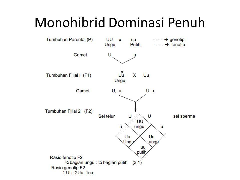 Monohibrid Dominasi Penuh