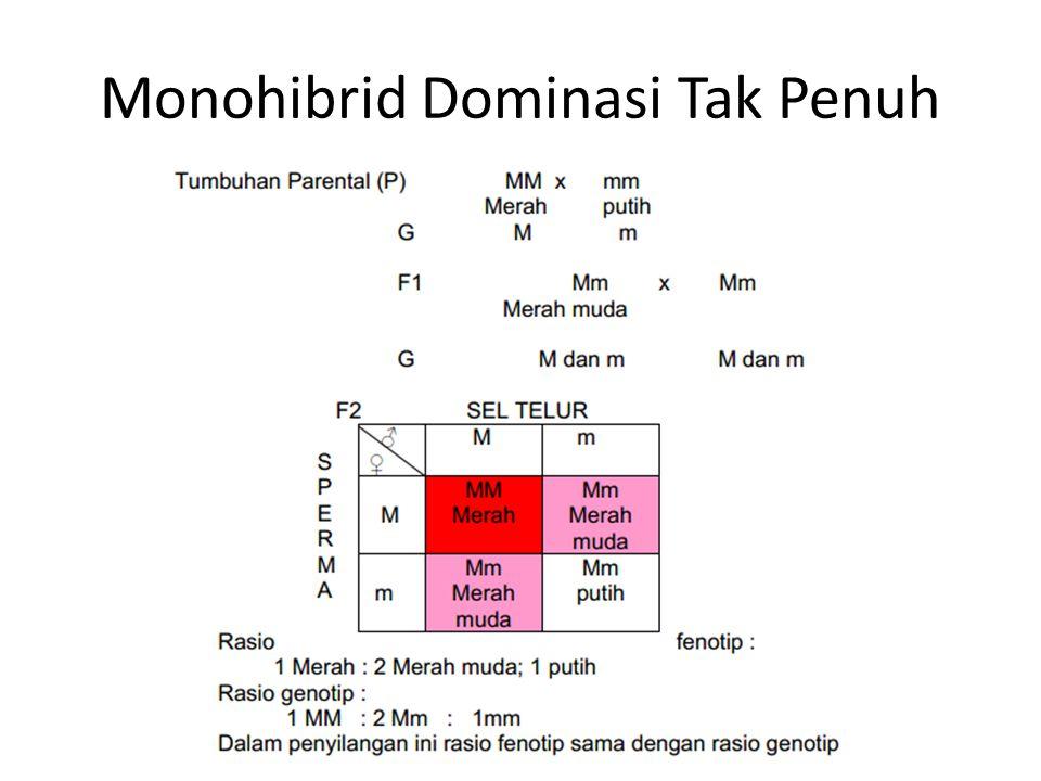 Monohibrid Dominasi Tak Penuh