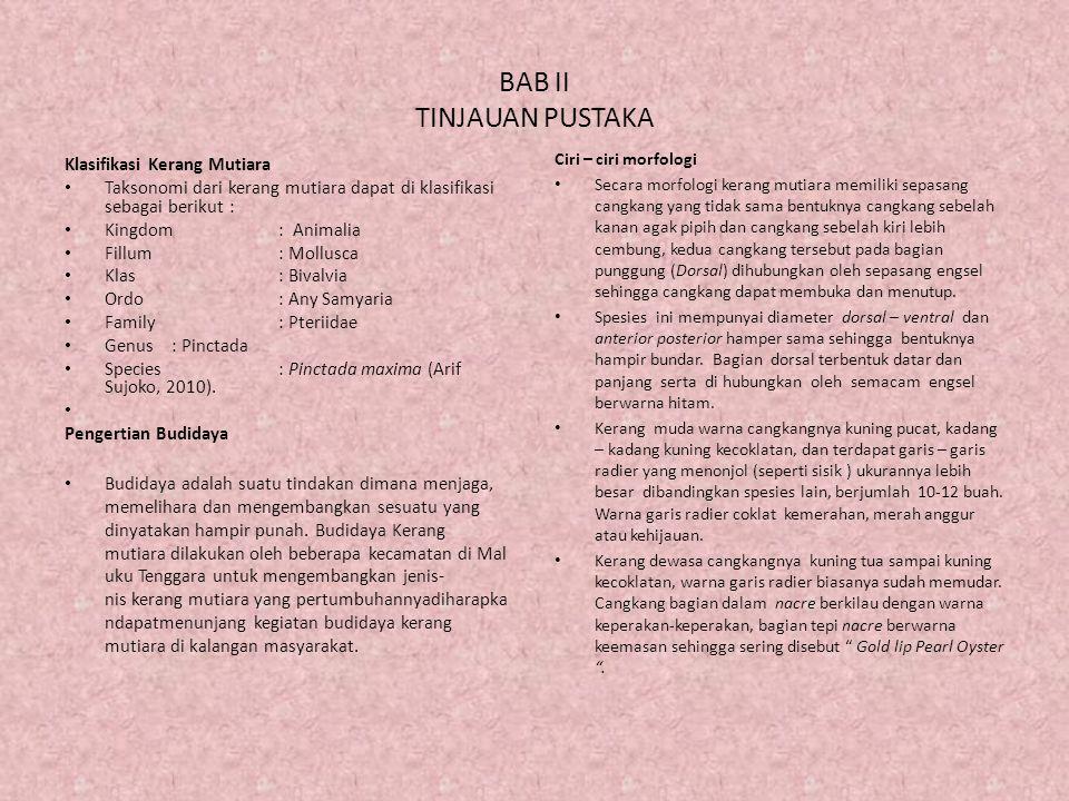 BAB II TINJAUAN PUSTAKA Klasifikasi Kerang Mutiara Taksonomi dari kerang mutiara dapat di klasifikasi sebagai berikut : Kingdom: Animalia Fillum: Moll